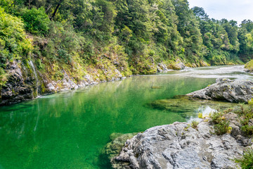 Beautiful green and clear Pelorus river, New Zealand