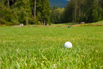Golf ball on green. Shallow depth of field. Focus on the ball.