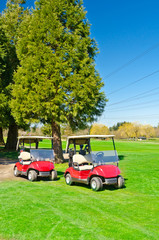 Two golf carts over nice green course