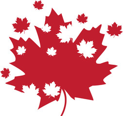 Red Canadian maple leaves