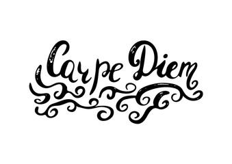 Carpe diem -  hand painted brush pen modern calligraphy