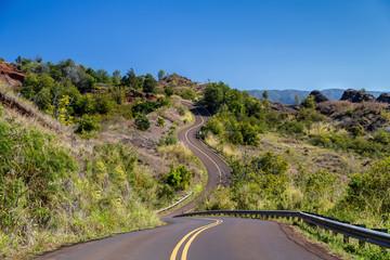 A Winding Road in Kauai