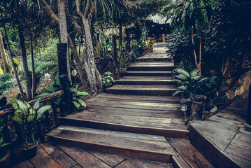 Old wooden stairs in the garden, selective focus on the steps. vintage tone
