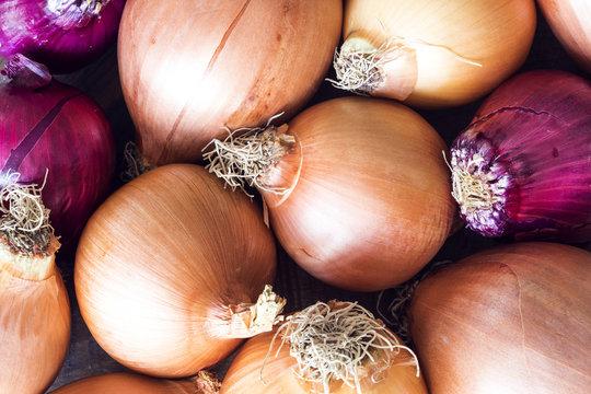 Ripe onions background