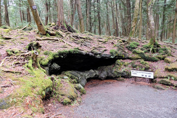 Ice Cave Entrance, Aokigahara Forest