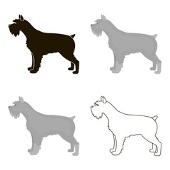 Schnauzer vector icon in cartoon style for web