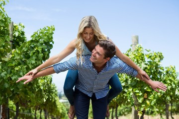 Happy young couple piggybacking at vineyard