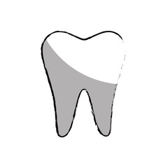 tooth silhouette isolated icon vector illustration design