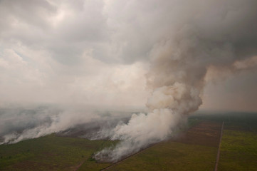 An aerial view of a peatland fire in Rokan Hilir District