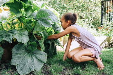 Mixed Race girl reaching in leafy plant