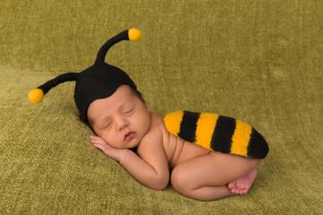 Cute bee baby