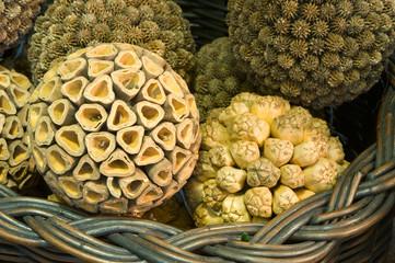 Decorative Seed Balls