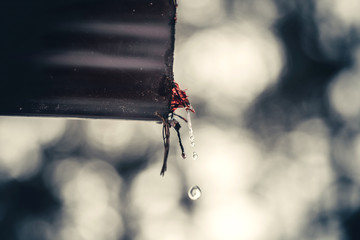 Drops of water from a drainpipe