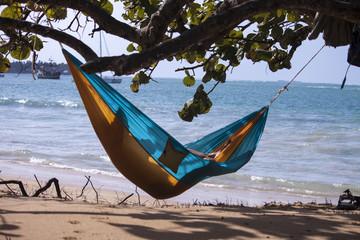 Las terrenas hammock