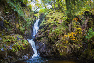 Beautiful view of little waterfall