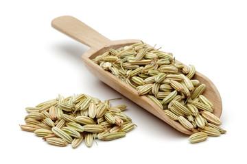 Fennel seeds in wooden scoop