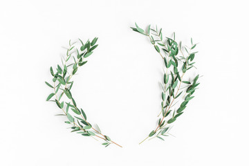 Eucalyptus on white background. Wreath made of eucalyptus branches. Flat lay, top view