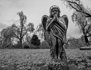 Praying Angel Statue after a Devastating Ice Storm