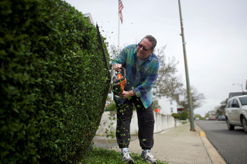 Gary Baker, 64, trims his hedge in Northampton