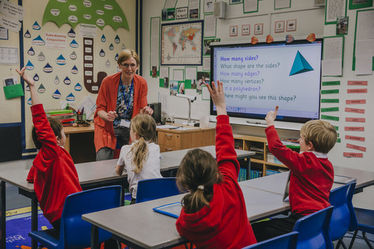 Primary School Lesson