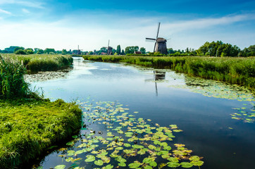 Aluminium Prints Mills Typical Dutch landscape in Alkmaar, the Netherlands