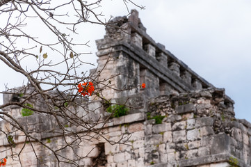 View of the Red House in Chichen Itza through the Red Flowers of a tree
