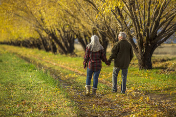Caucasian couple holding hands near trees in autumn
