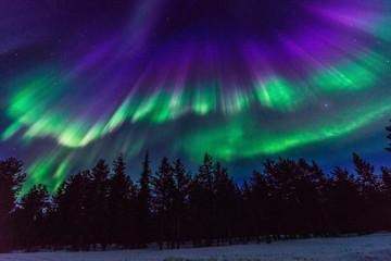 Foto op Plexiglas Noorderlicht Heaven dance
