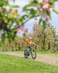 fröhlicher kleiner Radfahrer im Frühling