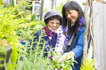 Older Japanese mother and daughter admiring garden