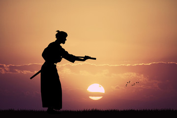 Aikido demonstration at sunset