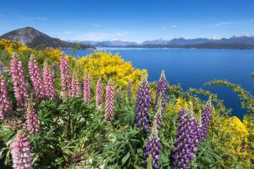 Villa La Angostura, Lake Nahuel Huapi, Patagonia, Argentina