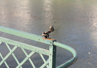 Skater's small figure on the waterfront of Uzhgorod, Western Ukraine photo