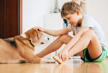 Tender scene between boy and dog
