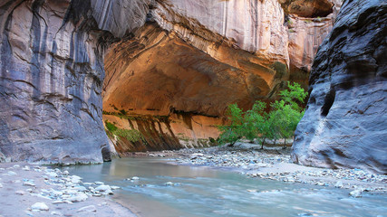 """The Subway"" - The Narrows Hike - Zion National Park - Utah, U.S.A"
