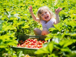 Carefree girl enjoying sunny day out in the strawberry field