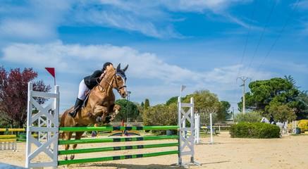 Photo sur Aluminium Equitation Equitation, saut d'obstacles, compétition.
