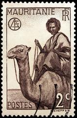 Nomand Man on Camel