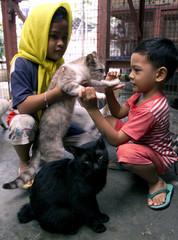 MALAYSIAN CHILDREN LOOK AT CATS IN KUALA LUMPUR.