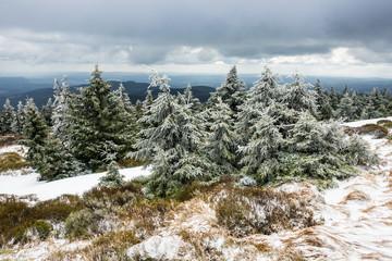 Landschaft mit Schnee auf dem Brocken im Harz