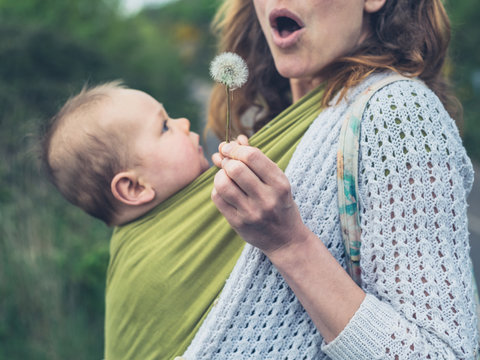 Mother with baby blowing dandelion