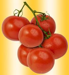 Fresh bright red vine tomatoes, isolated against a bright colored background.