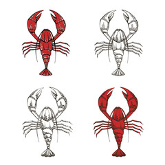collection of vector illustrations of crayfish on a white background