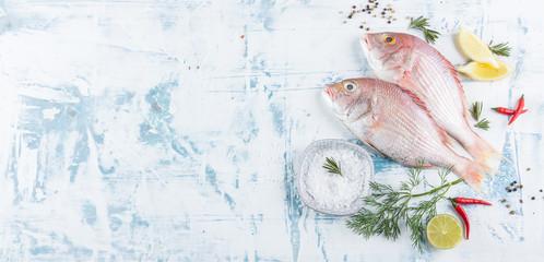 Printed kitchen splashbacks Fish Frische Dorade