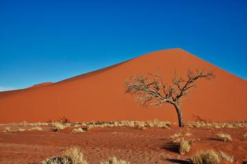 Dune 45, Sossus Dunes, Namibia