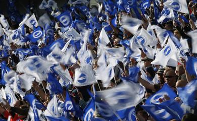Brighton fans waving flags