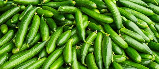 fresh cucumbers. food background