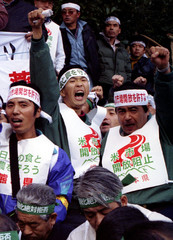 Angry Japanese farmers scream, opposing the government's expected decision on opening the domestic r..