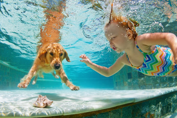 Underwater action. Smiley child play with fun, training golden retriever puppy in swimming pool - jump and dive. Active water games with family pet, popular dog breed like companion on summer vacation