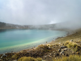 Alpine Crossing in New Zealand - Stock Image